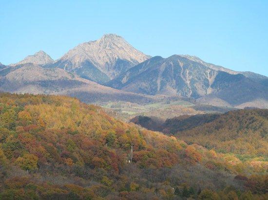 Yatsugatake Royal Hotel : 屋上展望台からの眺望