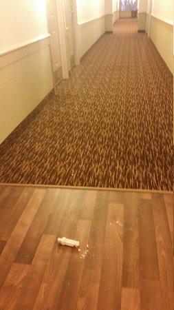 Extended Stay America - Detroit - Auburn Hills - Featherstone Rd.: broken light  bulb on hallway