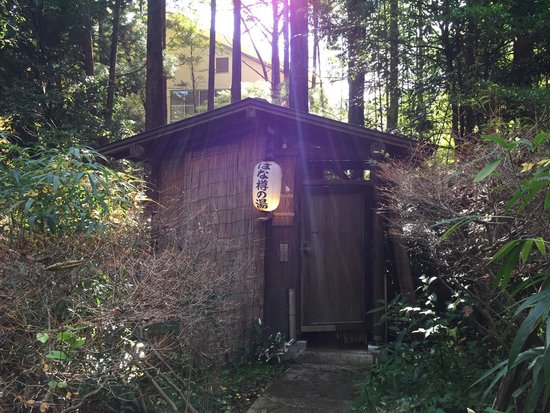 Mizu no To : One of the private (free) mixed onsen in the garden