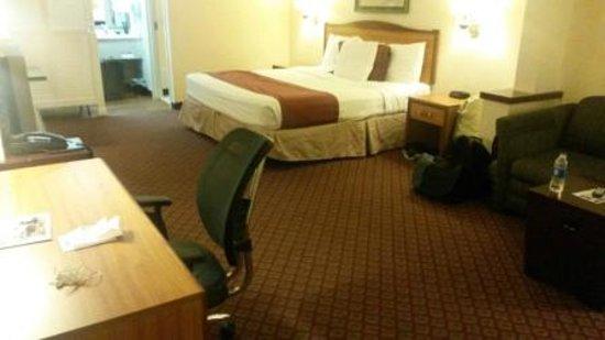 Arbor Suites Medical Mile : King Suite