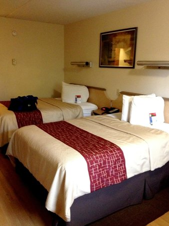 Red Roof Inn Albany Airport: Beds Were Comfy But Pillows Were Skinny.