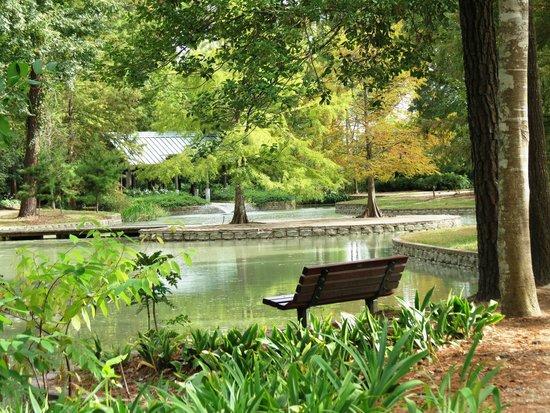 Mercer Arboretum U0026 Botanic Gardens: Storey Lake