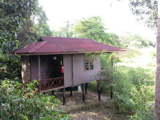 Borneo - Sepilok Forest Edge Resort - Quaint little cottages