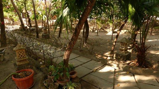 Anda Bungalows: Dry garden