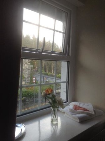 Oakfield House B & B : view from our room