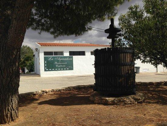 La Aguzadera: Tradición vinícola