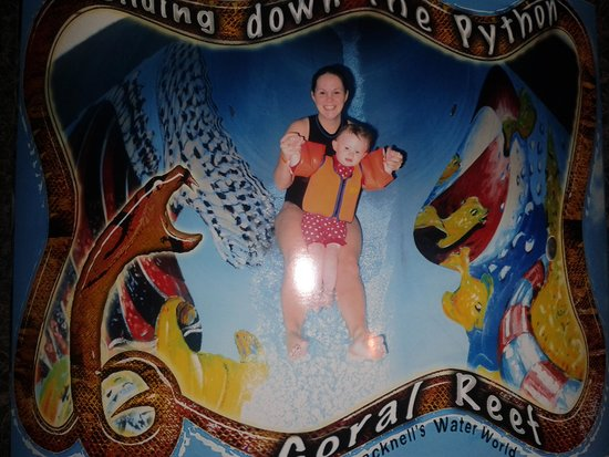 Coral Reef - Bracknell's Water World: lots of fun