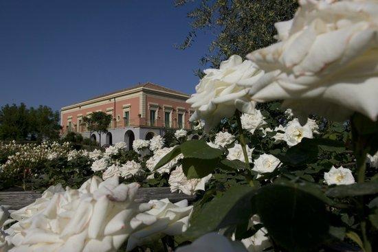 I giardini di villa fago foto di ristorante i giardini - Giardini di villa fago ...