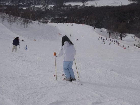 Pilatus Tateshina Ski Resort: 4kmの林間コース