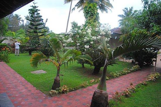 Casamaria Beach Resort: сад