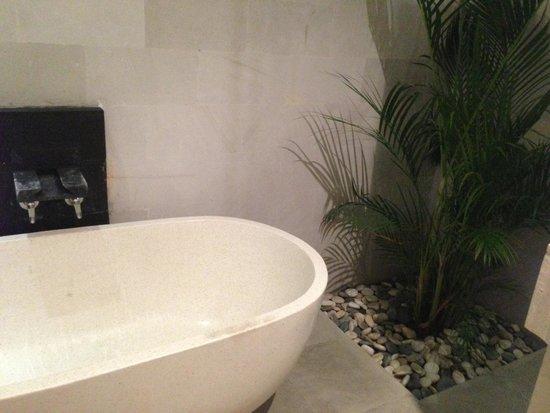 The Jas Villas : Main bathroom