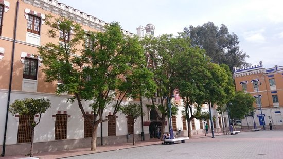 Acuario de la Universidad de Murcia