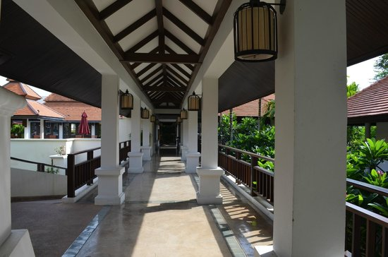 Bodhi Serene Hotel: corridor