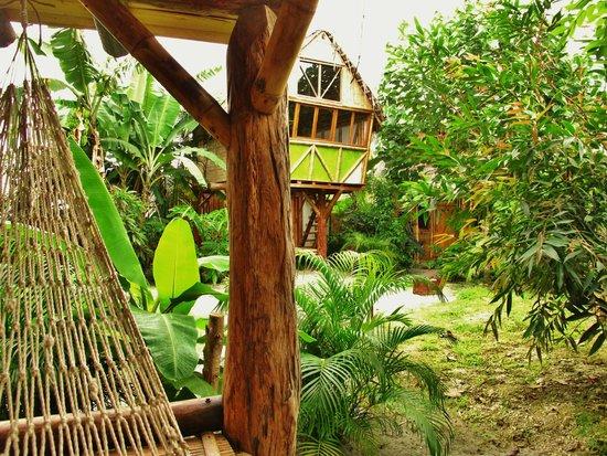Double bungalow Picture of La Jungla Tropical Bungalows Mompiche