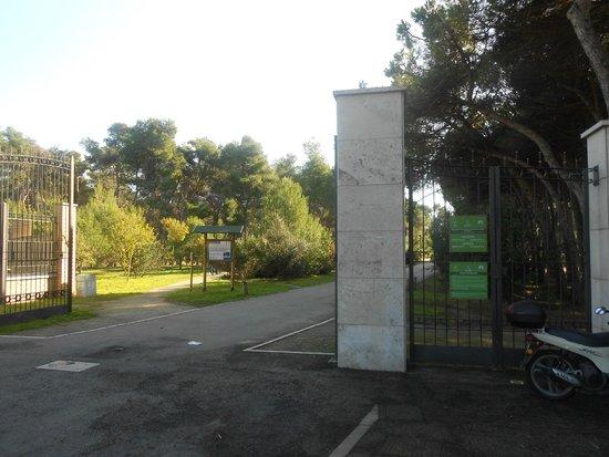 Pineta Dannunziana : ingresso
