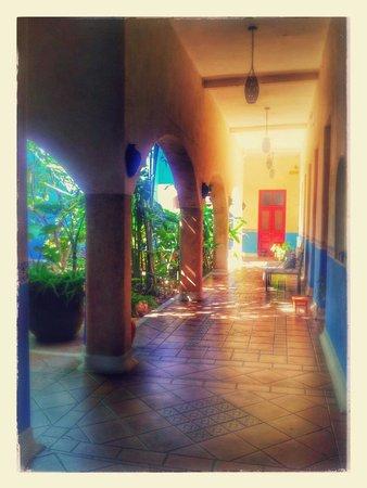 Hotel Medio Mundo: Le patio au rdc