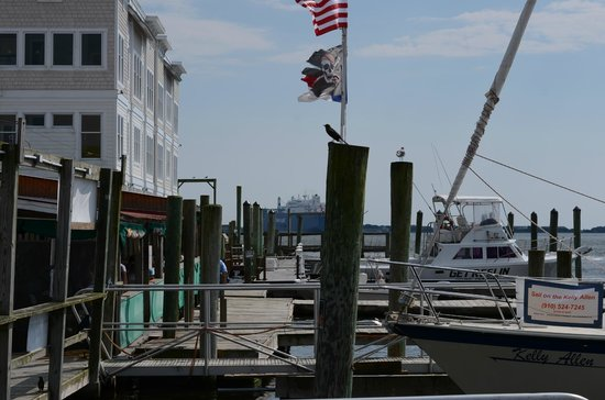Yacht Basin Eatery: View from the eatery