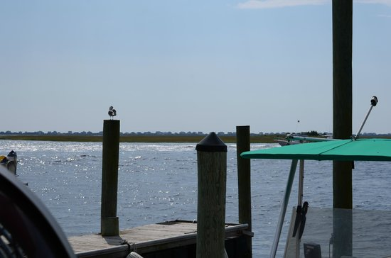 Yacht Basin Eatery: Looking across the water from the eatery