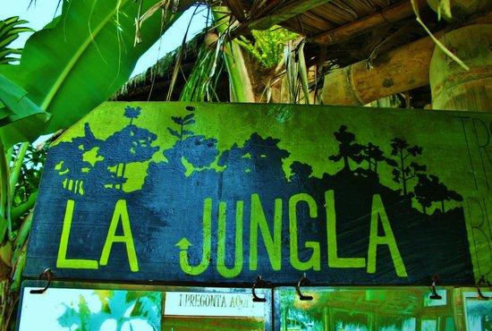 La Jungla Photo de La Jungla Tropical Bungalows Mompiche
