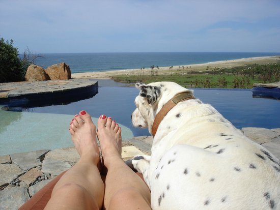 Los Colibris Casitas: Soaking up the sun and the view with my companion Ms Juliette