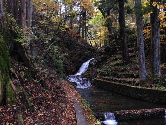 Takinoo Shrine: Small waterfall just before the top