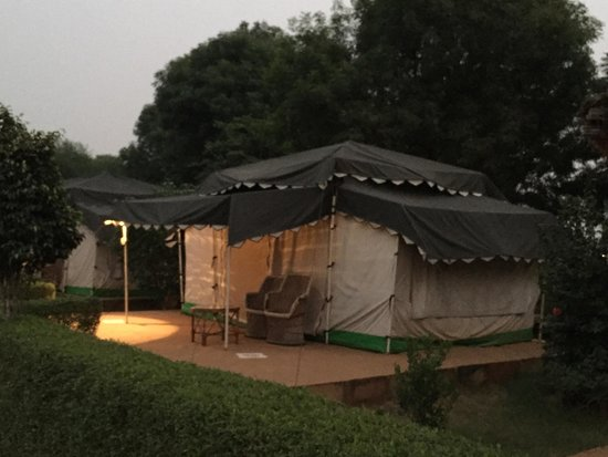Abhaneri Village Safari Camp: Evening time