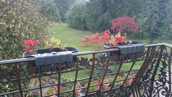 A la Grenouille: Le Parc en Automne