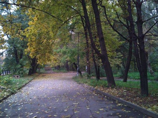 Park Gagarina