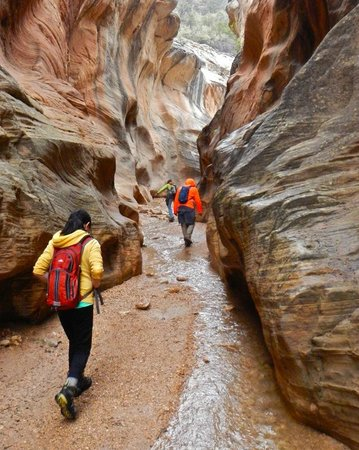 Willis Creek Slot Canyon: Unlike slots like Little Wild Horse Canyon near Capital Reef NP, Willis Creek is wide.