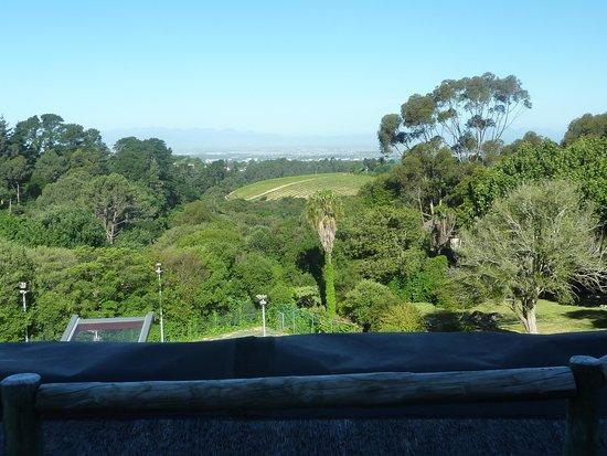 Ikhaya Safari Lodge: View from the main terrace