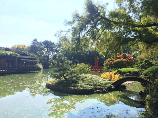A Picture Of Brooklyn Botanic Garden Brooklyn Tripadvisor