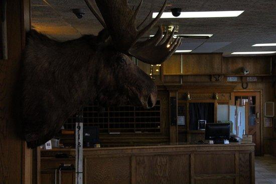 Best Western Gold Rush Inn: Lobby