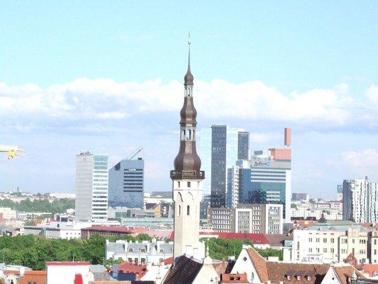 Photo of Scenic Lookout Patkuli at Nunne 16, Tallinn 10133, Estonia