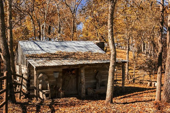 many old desert cabins in ozark national forest picture