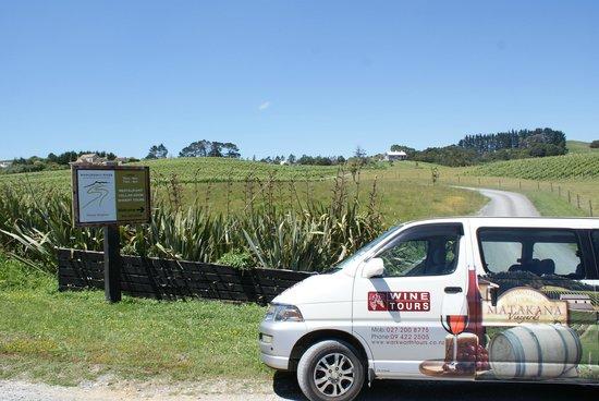 Matakana Tours: Matakana Wine & Food Tours