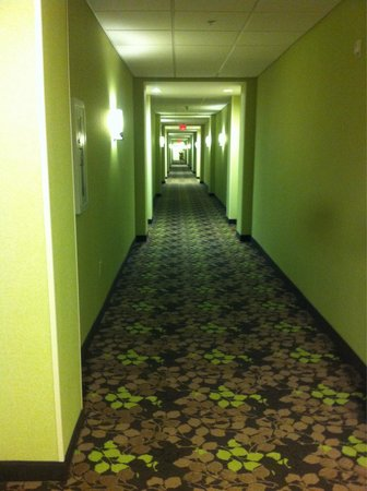 Homewood Suites by Hilton Charlotte/Ayrsley : View of one hall