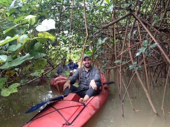 Rafiki Beach Camp: Kayaking in the mangroves!