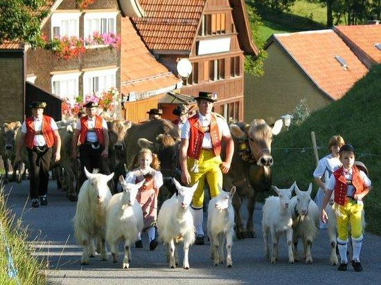 Pension Alpenrosli: Appenzellerland