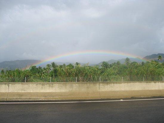 Fern Gully: Most intense rainbow we've ever seen