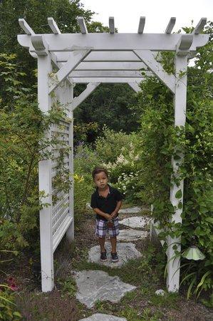 Shaker Mill Inn: Nice gardens