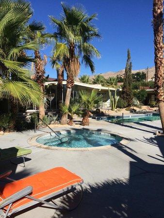 Hope Springs : pool
