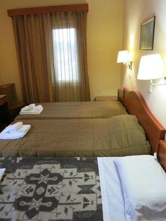 Lakonia Hotel : basic room