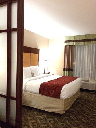 Comfort Suites Airport : King suite