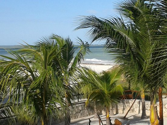 Beach Guesthouse Holbox Apartments & Suites: view from room