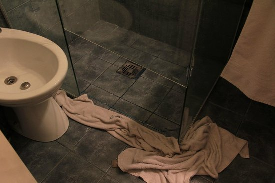 Bohemia Buenos Aires: leaking shower, room 102