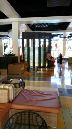 Renaissance ClubSport Aliso Viejo Laguna Beach Hotel: Lobby