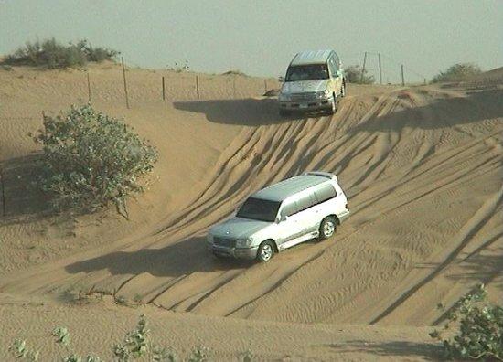 Unique Tour: Dune bashing