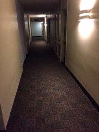 The Midtown Hotel: Hallway
