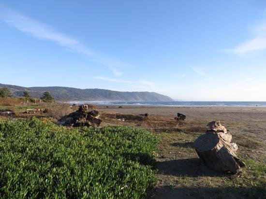 Anchor Beach Inn: crescent beach