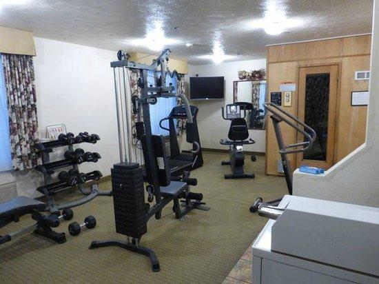 Comfort Inn & Suites: Fitness room